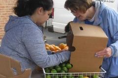 1_BMO-Volunteer-Day-058