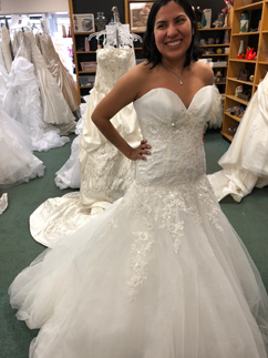 Bridal sale Tinley Park January 19